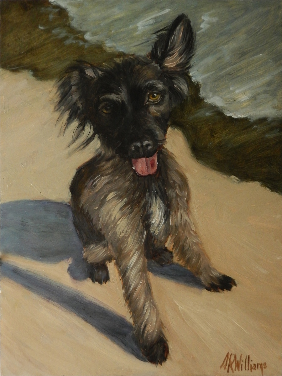2019 Luna at the Beach 12x16 oil on panel