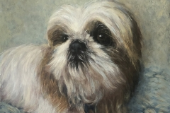2020 Coco-Puff 12x12 Oil on Panel
