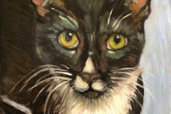 2021 Ellie (Shelter Kitty) 9x12 oil on panel