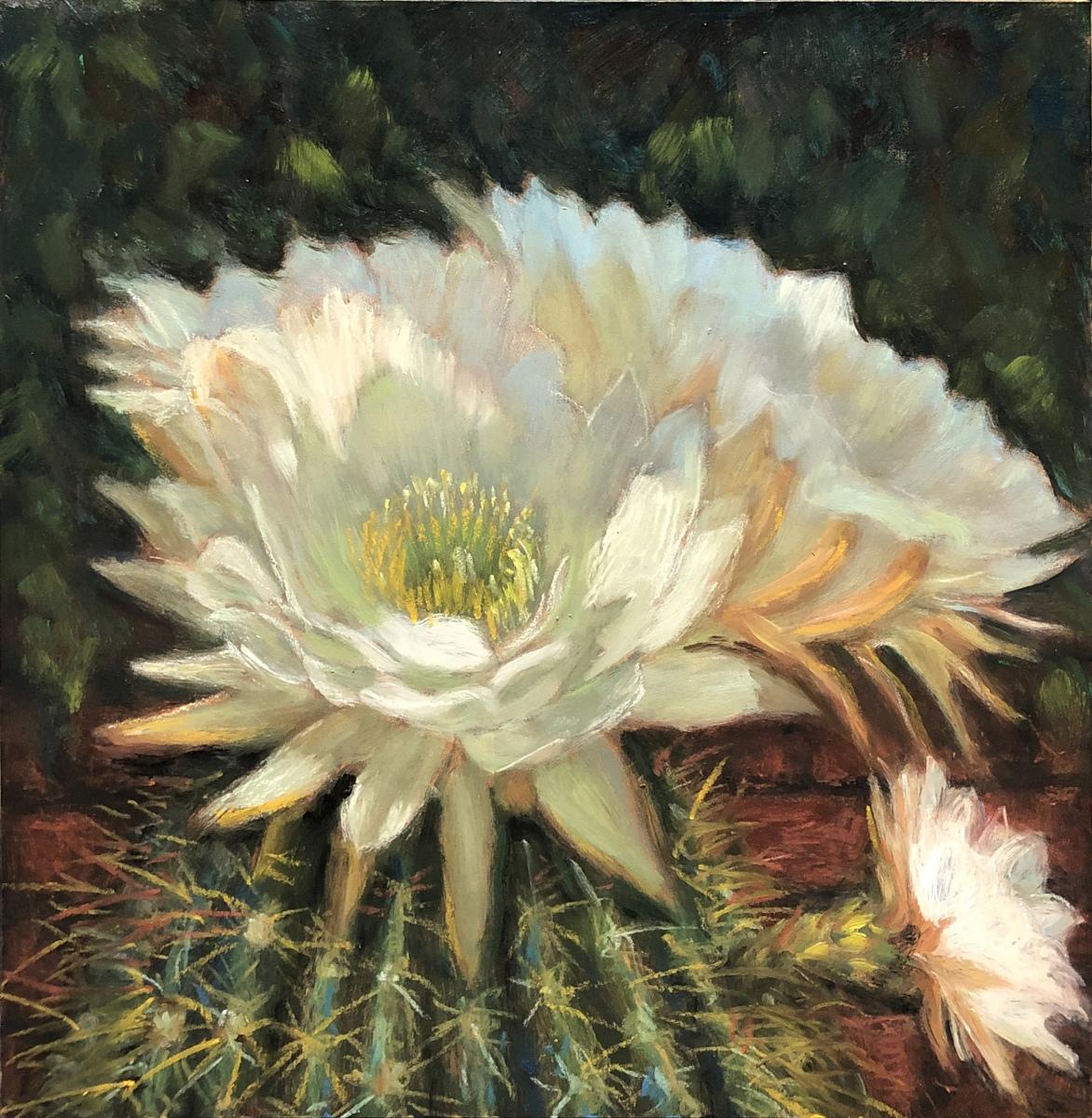 2020 Barrel Cactus Bloom 10x10 oil on panel